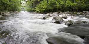 smoky-mountains-pictures-flowing-water10